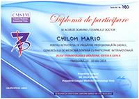 Diploma 15
