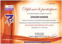 Diploma 17
