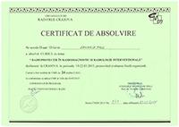 Diploma 20